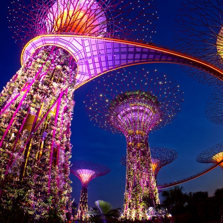Ascend the quirky yet fascinating Supertrees in the Gardens by the Bay.
