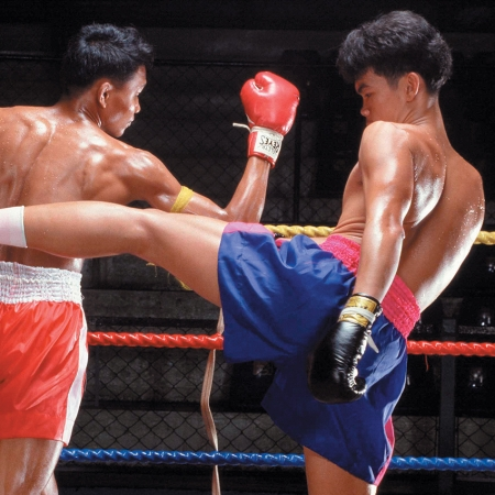 Attend a private Muay Thai (Thai Boxing) performance, with the opportunity to take a lesson.