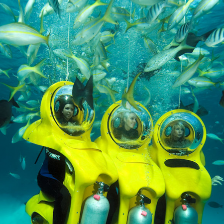 "Climb aboard your personal submarine while you sit on a ""bike"" and are taken to a beautiful shallow reef."
