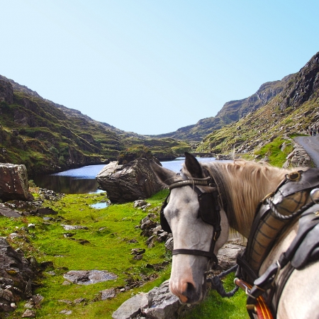 Gap of Dunloe – Pony and trap, BBQ lunch with music and small boats on lakes of Killarney