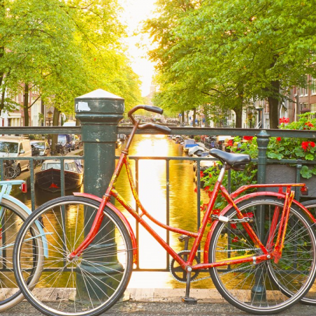 """Bike tour -- """"Get in touch with the Dutch."""""""