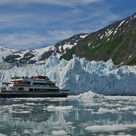 Glacier and wildlife cruises