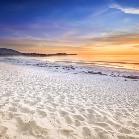 Shop Carmel-by-the-Sea and Monterey, golf at Spanish Bay & Pebble Beach, go whale watching!