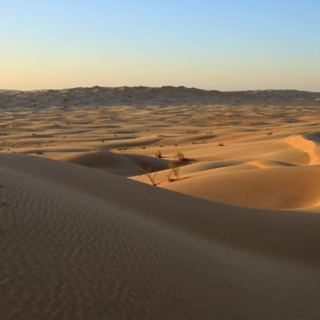 Explore the Wahiba sands and Empty Quarter – the world's biggest sand desert.