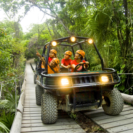 Exhilarating Eco-extreme Parks, Cultural and Inspiring Excursions.