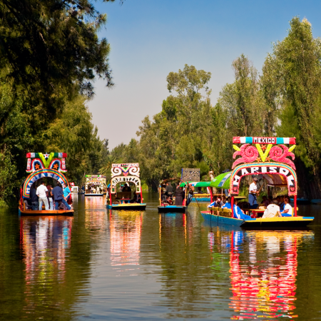 "Xochimilco, besides being famous for its canals and trajinera boats, has one of the most traditional nurseries in the city. The name of this area in Mexico City is a ""Place for the sowing of flowers"" or ""Field of flowers"""
