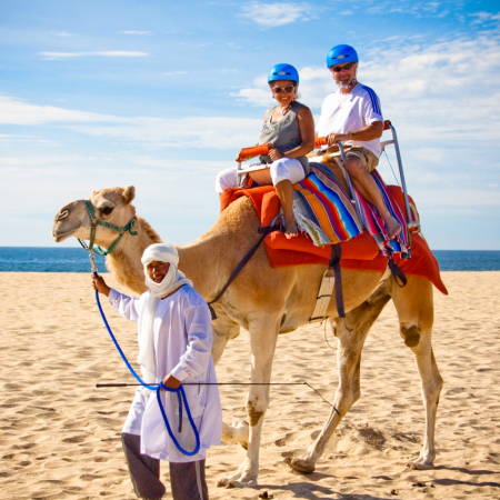 Camel Safari Adventures